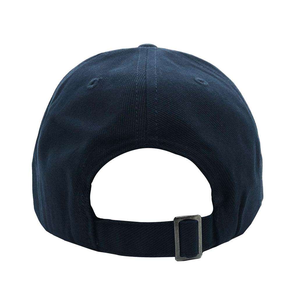 Blue Hat Back